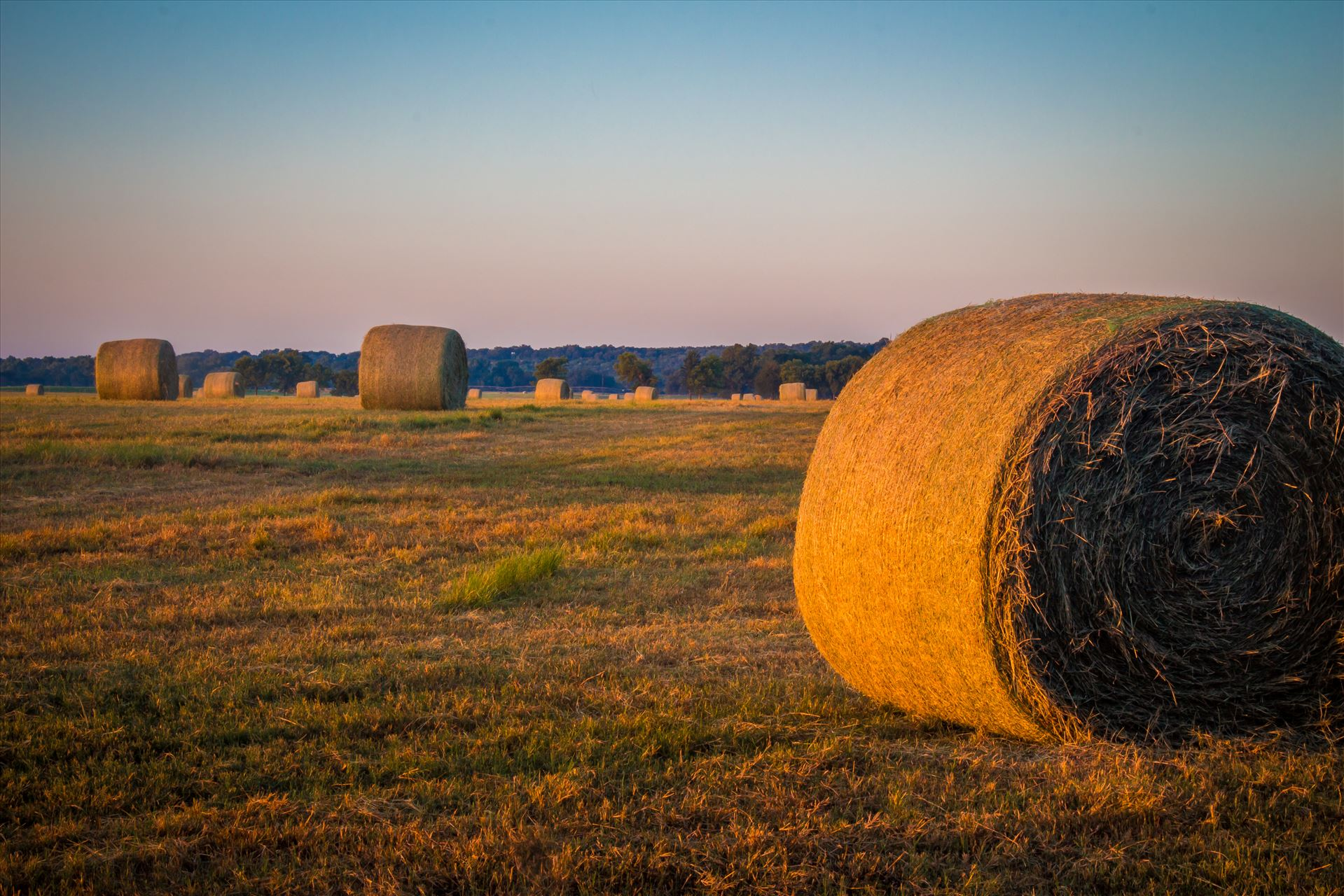 20170819_Hay Field_012.jpg -  by Charles Smith Photography