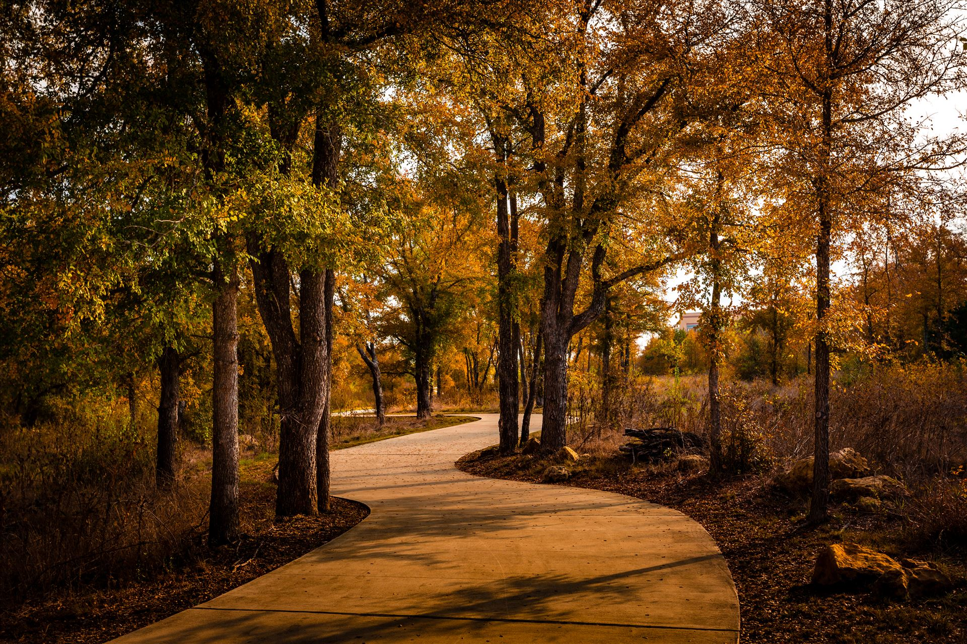 20171104_PepperCreek_047.jpg -  by Charles Smith Photography