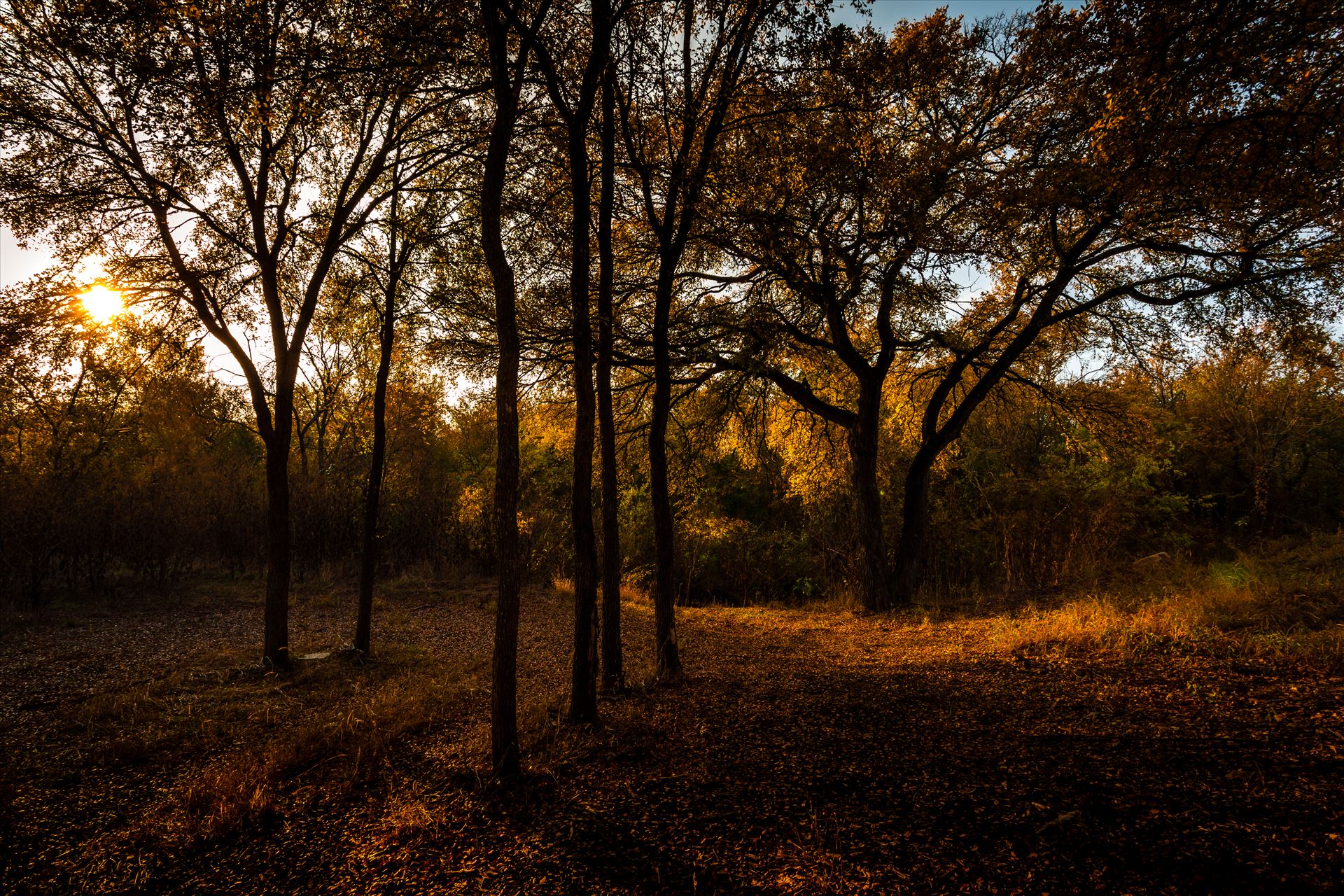 20171104_PepperCreek_014.jpg -  by Charles Smith Photography